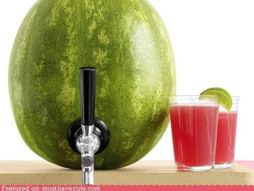 beverage booze drinks epicute fruit tap watermelon - 4929243904