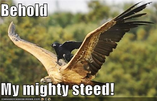 behold,caption,captioned,crow,eagle,flying,mighty,riding,steed