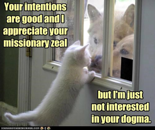 caption,captioned,cat,dogma,dogs,door to door,excuse,kitten,missionaries,pun,reason