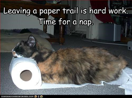 caption,captioned,cat,hard,leaving,nap,paper,pun,sleeping,time,trail,work