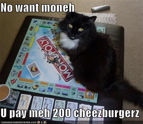 Cheezburger Image 4932925184