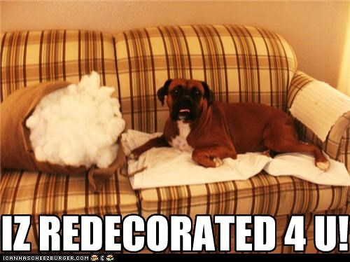 bad dog couch interior designer mastiff mess mixed breed Pillow pillow stuffing redecorated - 4932956416