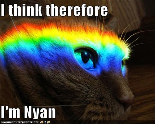 caption,captioned,cat,cogito ergo sum,descartes,meme,Nyan Cat,pun,quote,rainbow