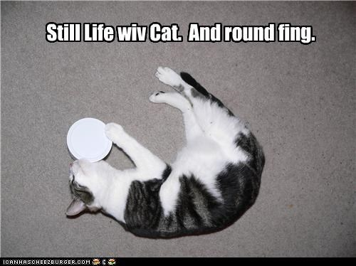 and art artist artwork caption captioned cat name piece round still life thing title - 4933912576