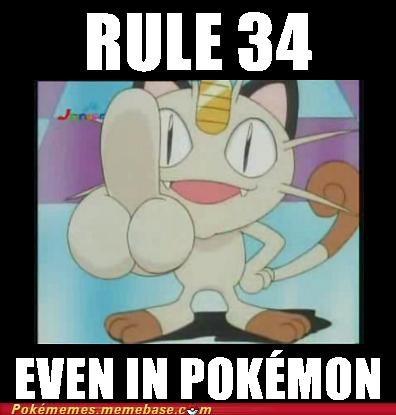 dude junk Memes Meowth Rule 34 - 4934121472