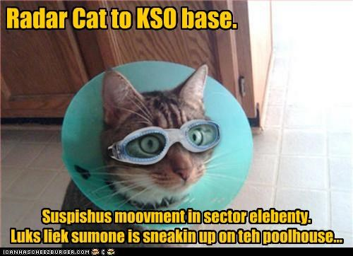 Radar Cat to KSO base. Suspishus moovment in sector elebenty. Luks liek sumone is sneakin up on teh poolhouse...