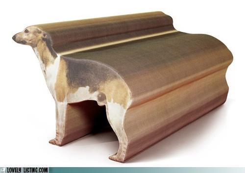 chair dogs greyhound - 4935018496