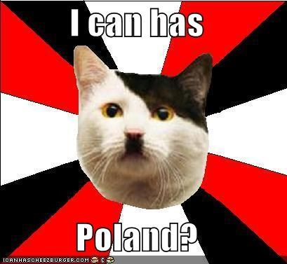 animemes cheezburger hamburg hitler Lenin Cat nazi poland puns - 4935203840