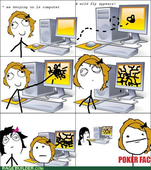 broken,fly,poker face,Rage Comics,screen