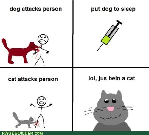 attack,Cats,dogs,pets,Rage Comics,unfair