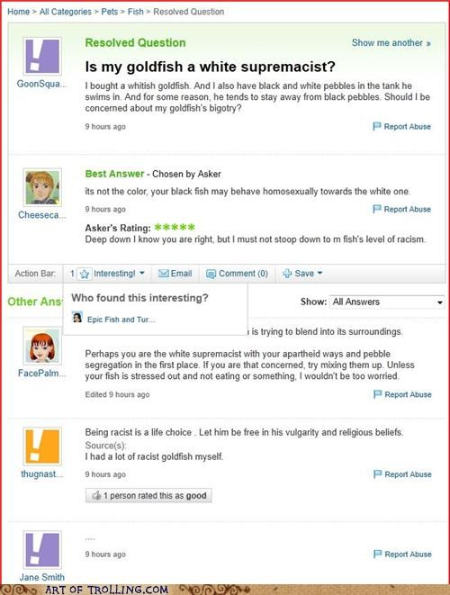 black goldfish pebbles racism white Yahoo Answer Fails - 4937536512