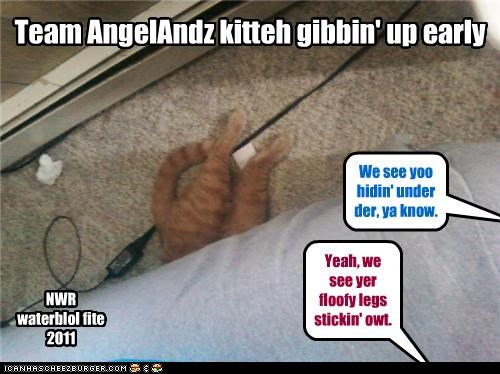 Team AngelAndz kitteh gibbin' up early We see yoo hidin' under der, ya know. Yeah, we see yer floofy legs stickin' owt. NWR waterblol fite 2011