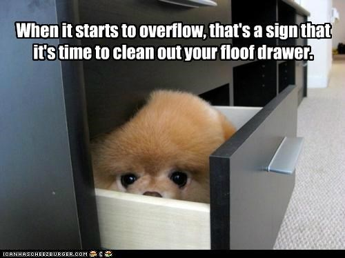When it starts to overflow, that's a sign that it's time to clean out your floof drawer.