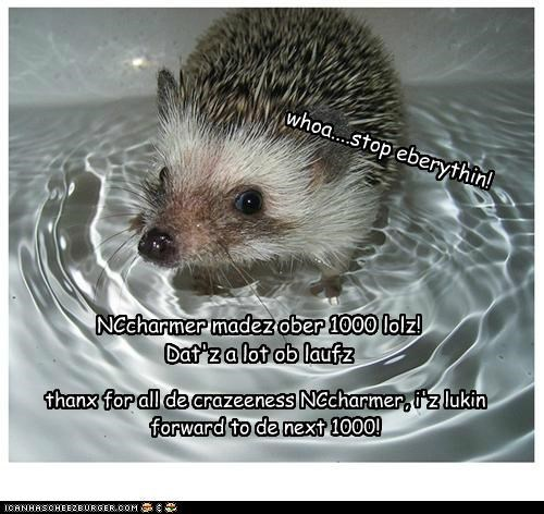 Cheezburger Image 4938578688