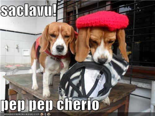 Cheezburger Image 4939576064