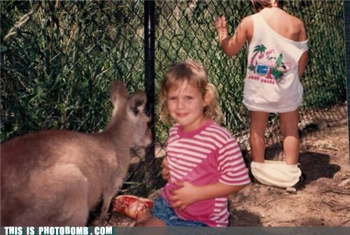 kangaroo kids Kids are Creepers Too pee