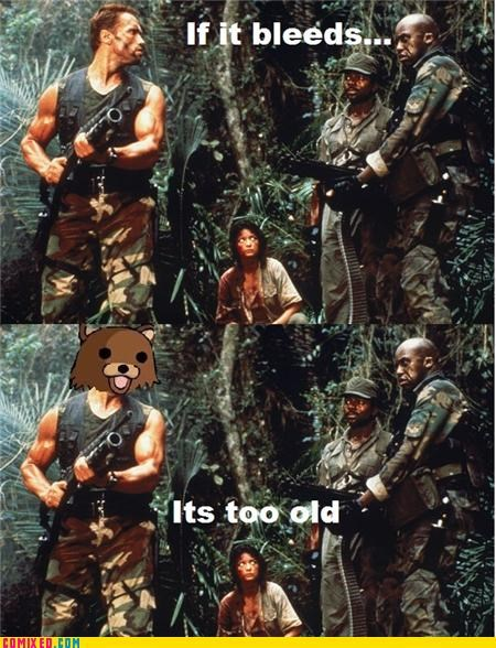 Arnold Schwarzenegger From the Movies pedobear Predator - 4940893952