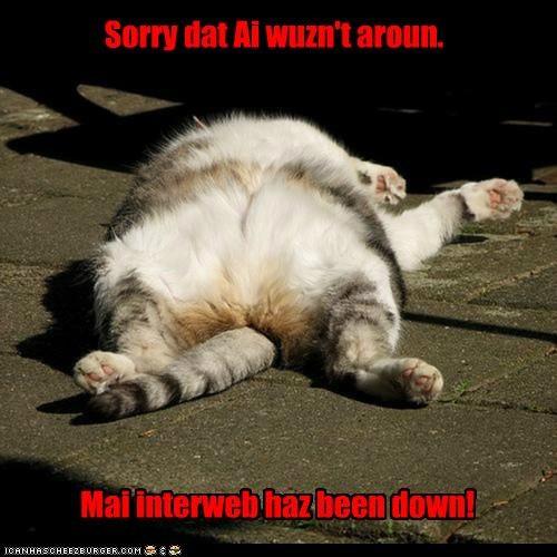 Sorry dat Ai wuzn't aroun. Mai interweb haz been down!