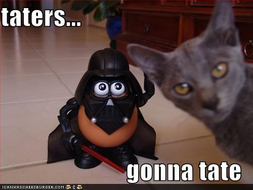 Cheezburger Image 4941005568