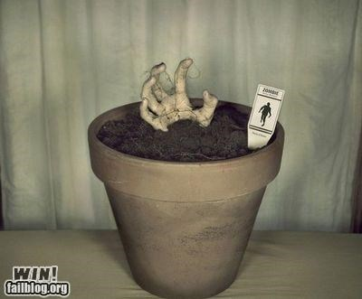 awesome Growing plants zombie - 4941457408