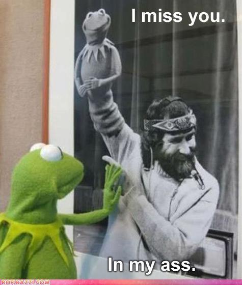 funny jim henson kermit the frog - 4942100992