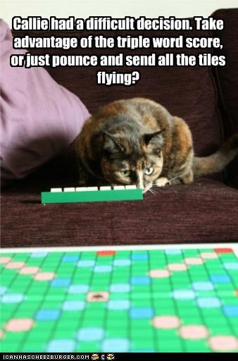 advantage calico caption captioned cat conundrum decision difficult flying options pounce score scrabble send tiles triple word - 4943808768