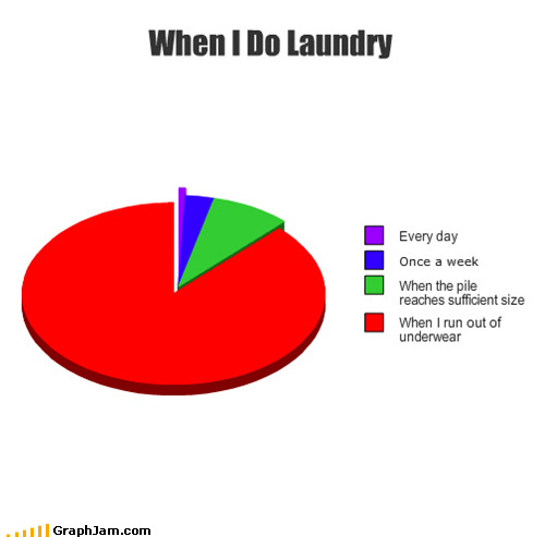 gross,hygiene,laundry,Pie Chart,underwear
