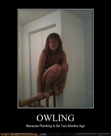 hilarious owling Planking railing wtf - 4944807424