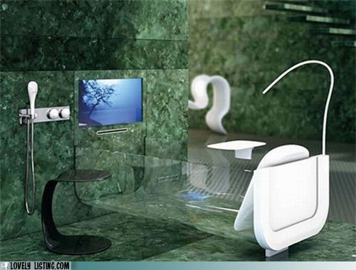 bath tub,bathroom,TV