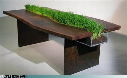 coffee table,furniture,grass,table