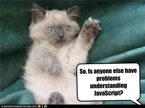 So, Is anyone else have problems understanding JavaScript?