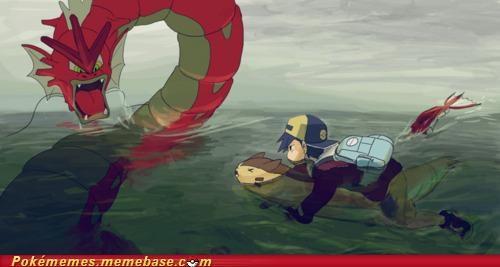 gyarados otter red surf