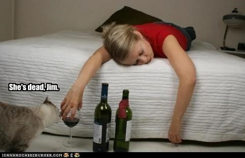 caption,captioned,cat,human,passed out,quote,reference,Star Trek,wine,woman