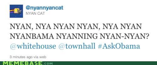 animemes Nyan Cat politics twitter wtf - 4945767424
