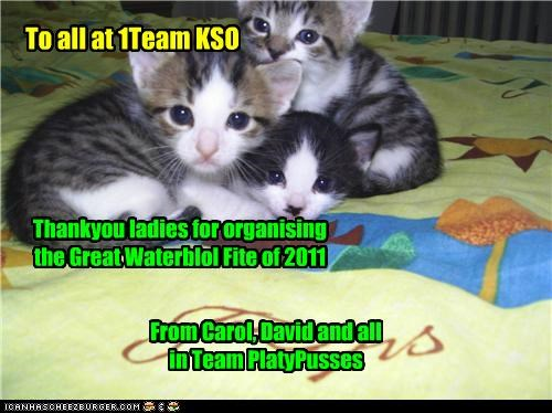 To all at 1Team KSO