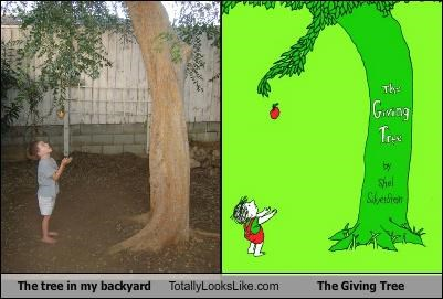 The tree in my backyard Totally Looks Like The Giving Tree