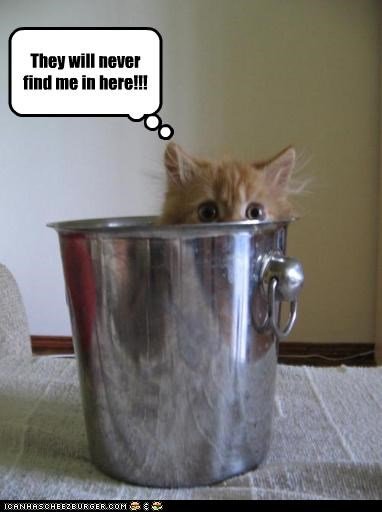 They will never find me in here!!!