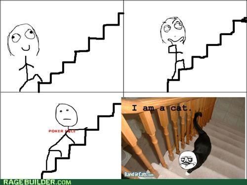 cat,poker face,pretend,Rage Comics,stairs