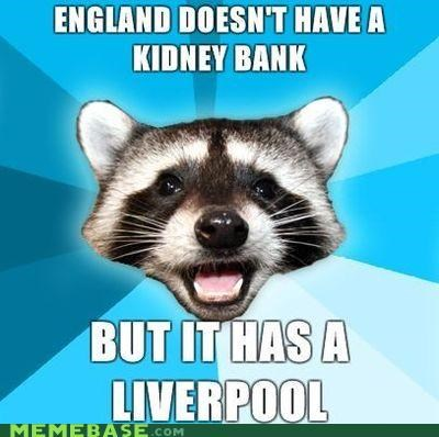 england,kidney,Lame Pun Coon,Music,pool,splash