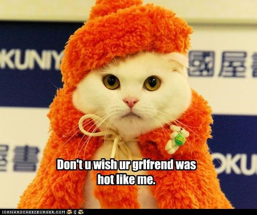 caption,captioned,cat,costume,dressed up,fur,song,title