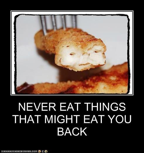 Cheezburger Image 4951736832