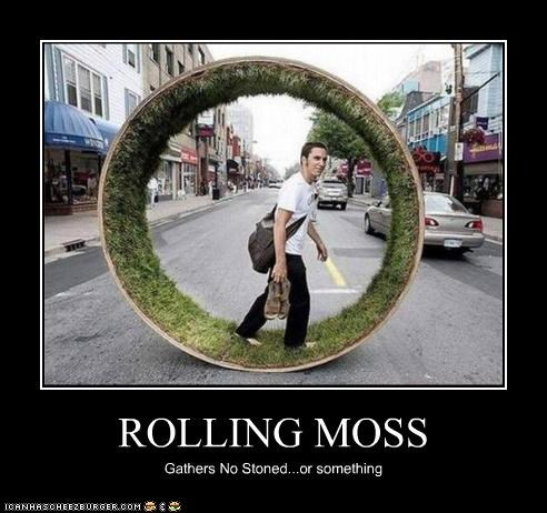 ROLLING MOSS Gathers No Stoned...or something