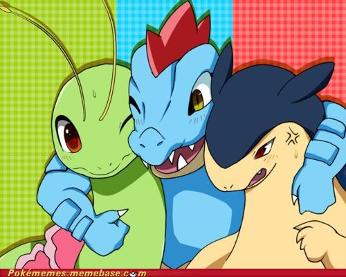 feraligatr,friends,meganium,typhlosion