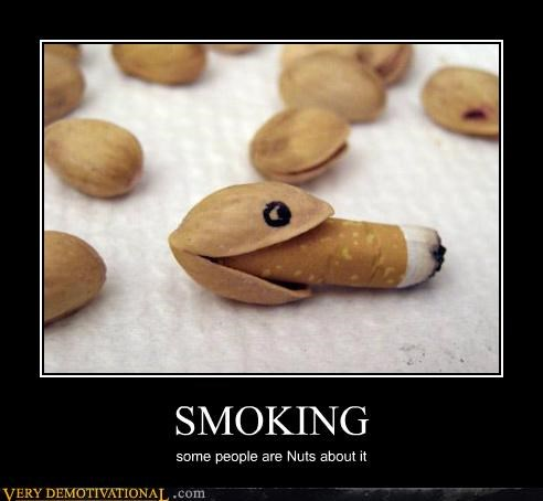 hilarious nuts Pistachio smoking