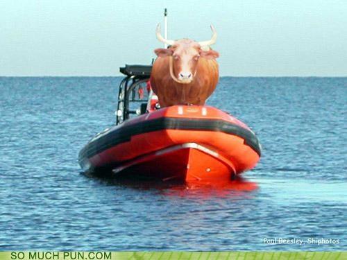 boat,botox,homophones,literalism,ox