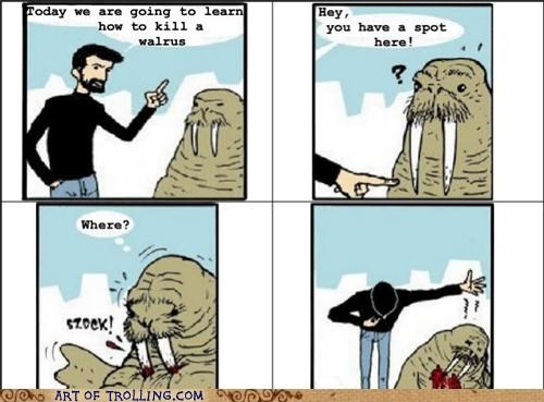 comic Sad walrus - 4954088960