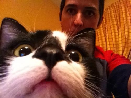Caturday kitteh photobomb - 4955762432