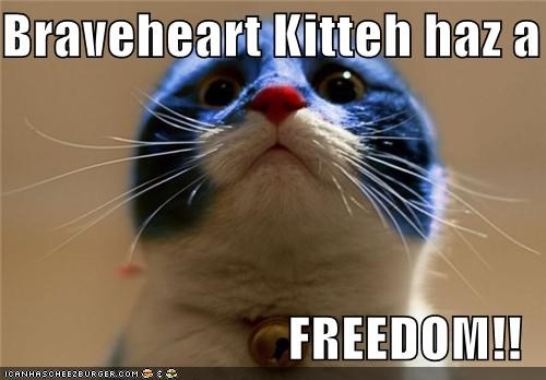 Braveheart caption captioned cat freedom i has mask Movie - 4957499136