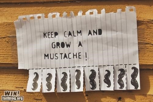 free,keep calm,moustache