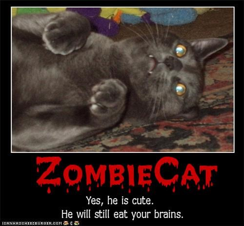 brains caption captioned cat caveat cute eat still zombie